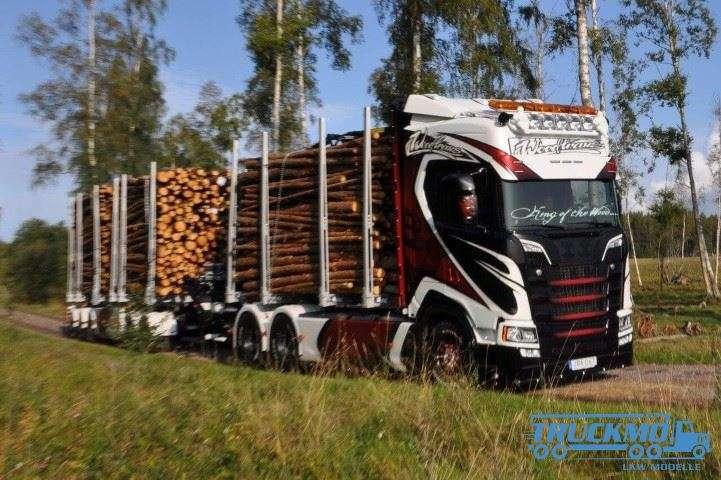 Tekno Woodtrans Scania Next Gen S-Serie Highline Holztransporter 74731