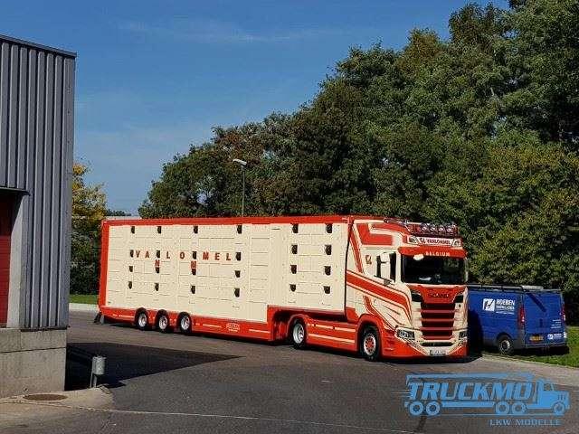 Tekno Vanlommel Scania Next Gen Highline Viehauflieger 75412
